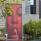 The Crown Fountain by reindeer