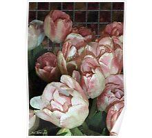 Dutch Tulips, Dutch Tile Poster