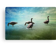 Going for a paddle! Canvas Print