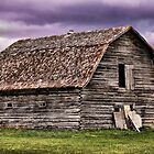 1800's Beauty by Vickie Emms