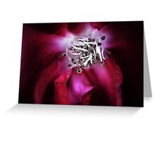 Your Velvet Touch Greeting Card