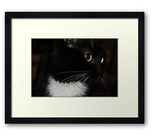 Hey, What's That?! Framed Print
