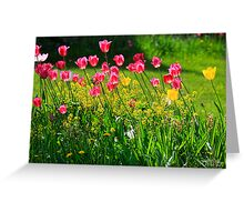 """ Just Tulips "" Greeting Card"
