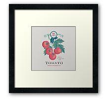 Veg Love Collection No.5 Tomato Framed Print