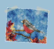 Springtime Robin by colleen e scott