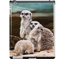 Always alert iPad Case/Skin
