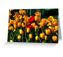 MOTHERS DAY SPECIAL Greeting Card