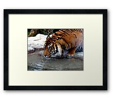 Thirsty Work Framed Print