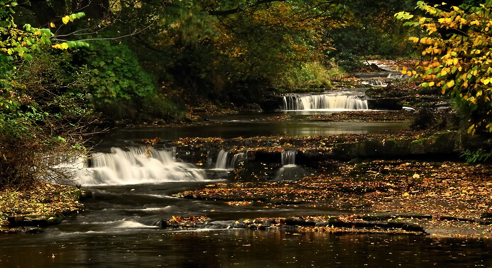 West Burton Falls, Bishopdale, Yorkshire Dales. by Miffy
