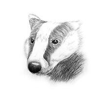 Badger Hufflepuff Photographic Print