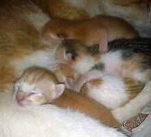 Motherhood by iquraishi