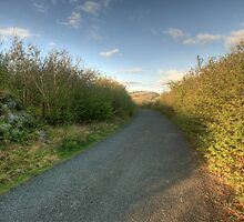 Burren Country road by John Quinn