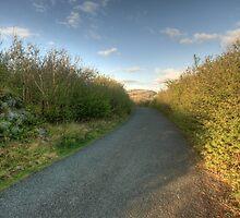 Burren Country road by John Quinn