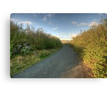 Burren Country road Canvas Print