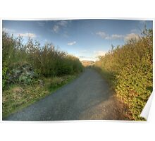 Burren Country road Poster