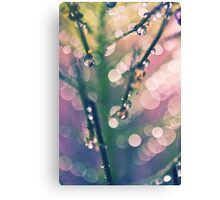Constellation Canvas Print