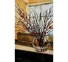 The glass vase. Photographic Print