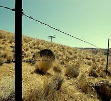 Along the fence by Amanda Huggins