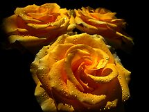 Roses for Mother. by Vitta
