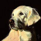 Golden Retriever by Jan Szymczuk