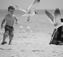 Boy chasing seagull by Amanda Huggins