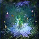 Underwater garden , or is it? by Elaine Game