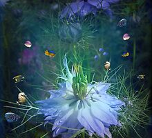 Underwater garden , or is it? by Elaine Game