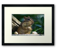 What's That! Framed Print