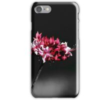 Lone Azalea Stem iPhone Case/Skin