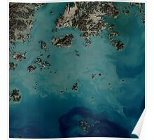 Satellite image: Seaweed farms in South Korea Poster