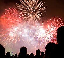 Fireworks by armiller007