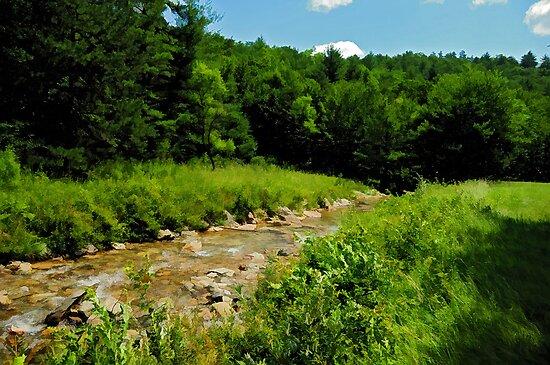 A Stream Gurgles Through It by Lois  Bryan