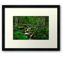 Smoky Mountains Spring Framed Print