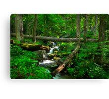Smoky Mountains Spring Canvas Print