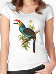 Grey-breasted Mountain-toucan (Andigena hypoglauca) Women's Fitted Scoop T-Shirt