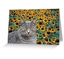 Tabby Cat and Sunflowers Greeting Card