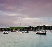 A view of Flushing, Cornwall by Lissywitch