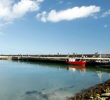 Howth Harbour 2010 by Martina Fagan