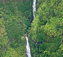 Green jungle falls in Kauai by Michael Brewer