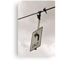 Nonconformist Bird On A Wire... Canvas Print