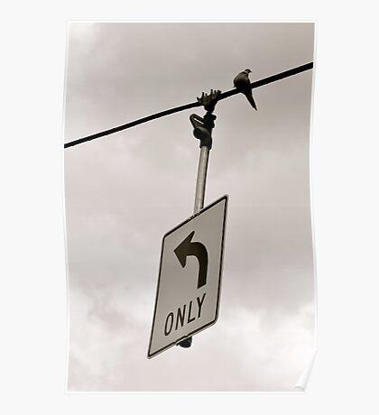 Nonconformist Bird On A Wire... Poster