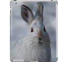 Curiousity - Ottawa, Ontario iPad Case/Skin