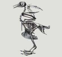 bird skeleton by marmur