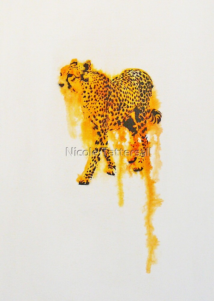 Flow Cheetah by Nicole Tattersall