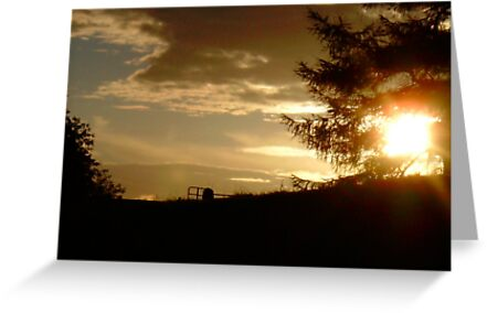 The sun sets at Kendal by Ladymoose