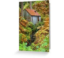 Rusty Woodland Hut (1) ~ Bala, Snowdonia Greeting Card