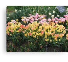 Flower Jubilee Canvas Print
