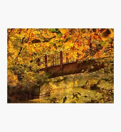 Bridge - The hidden bridge Photographic Print