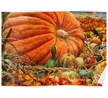 Pumpkin - Great Gourds Poster