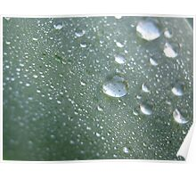 Water resistant Poster